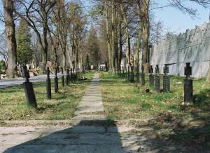 238 Groby żołnierzy z I wojny światowej na cmentarzu komunalnym