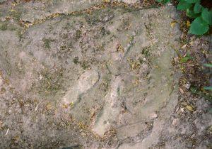Odciski stóp św. Jadwigi na kamieniu w Kościeliskach